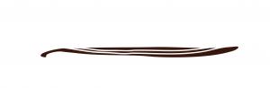 Vanilla Bean Icon from Manion's Vanilla